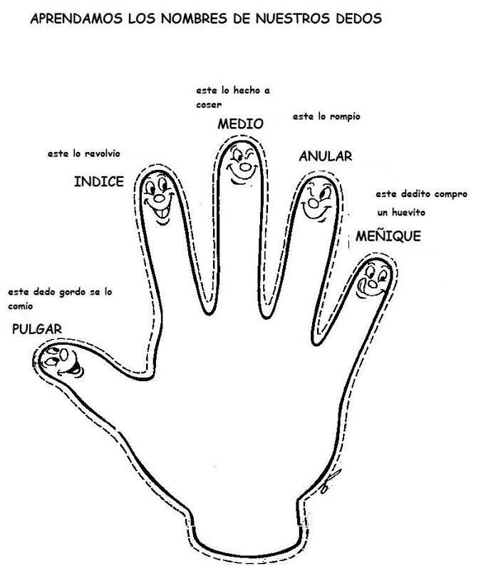 Aprender los nombres de los dedos