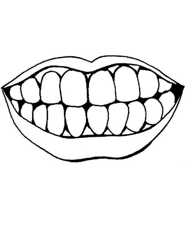 Dibujos de las partes del cuerpo humano boca y dientes
